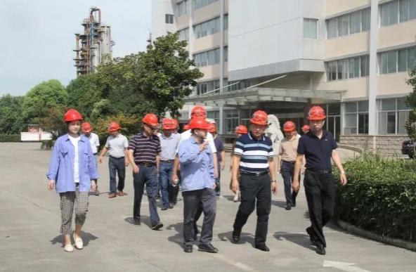 市政协无党派界别组开展稳就业专题调研活动